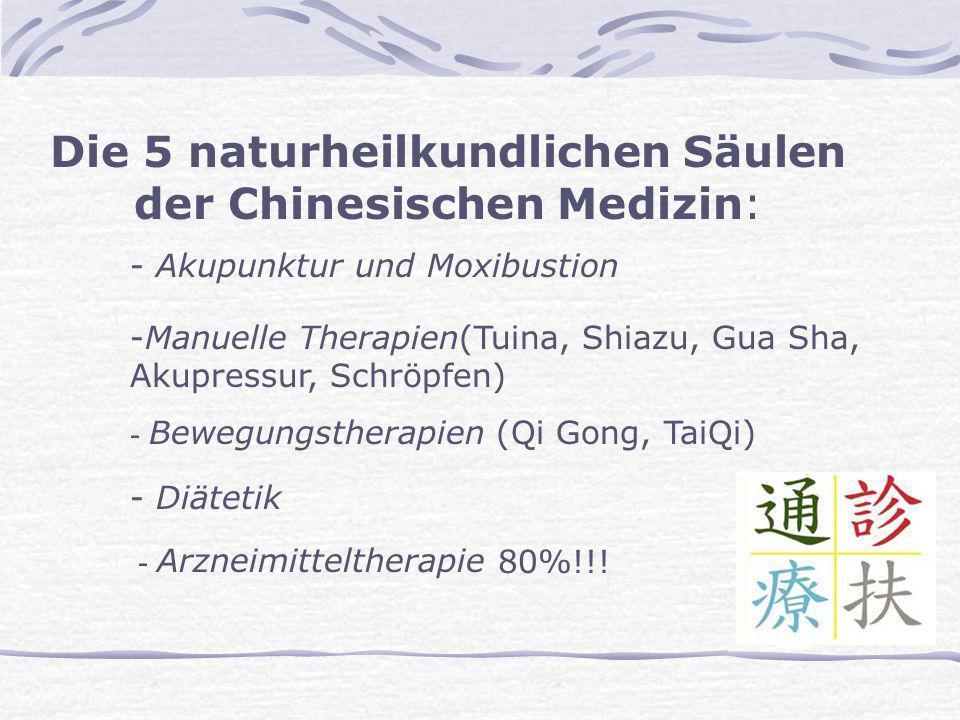 Die 5 naturheilkundlichen Säulen der Chinesischen Medizin: