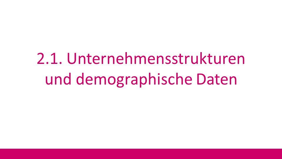 2.1. Unternehmensstrukturen und demographische Daten