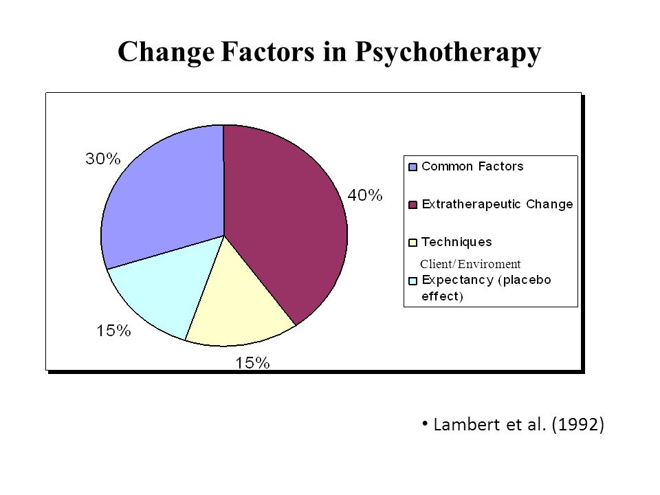 Change Factors in Psychotherapy