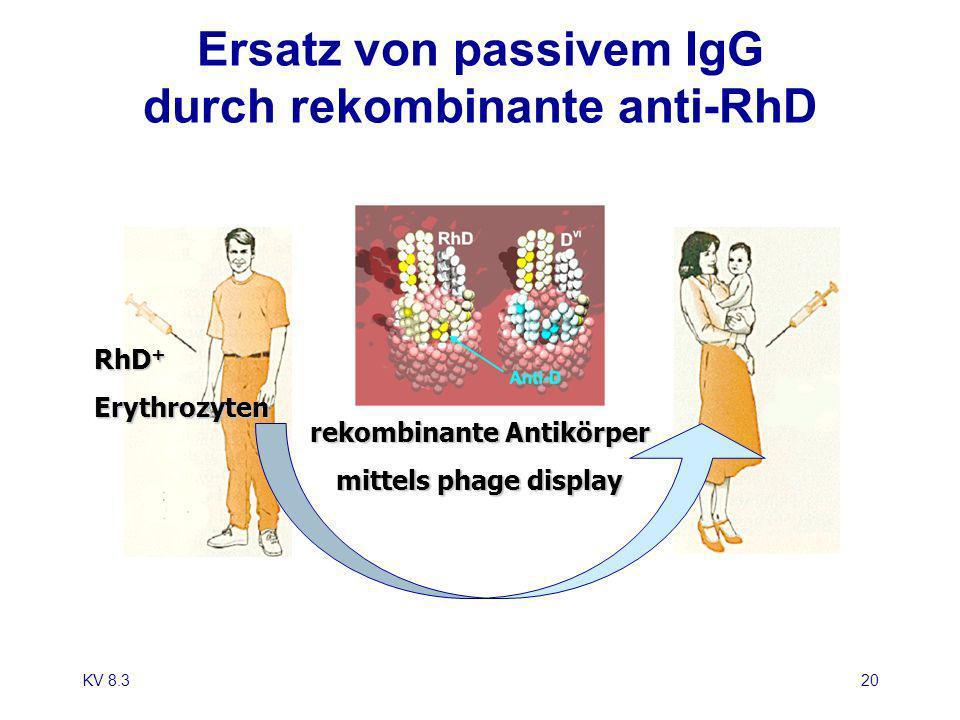 Ersatz von passivem IgG durch rekombinante anti-RhD