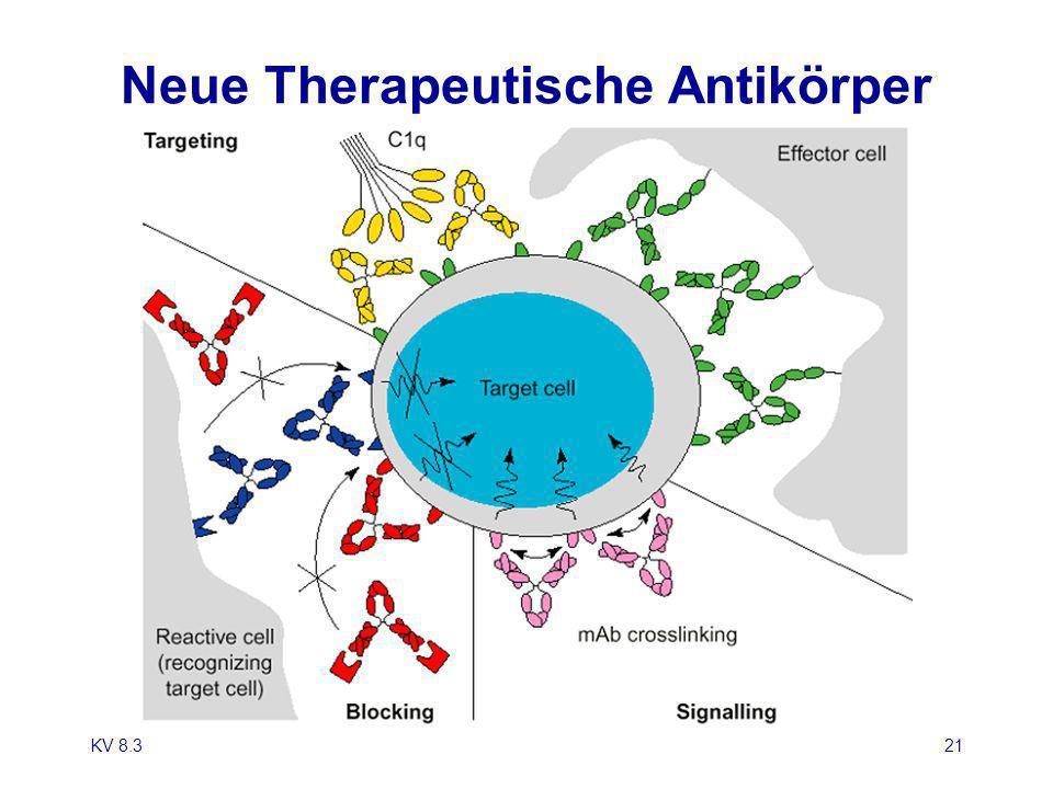 Neue Therapeutische Antikörper