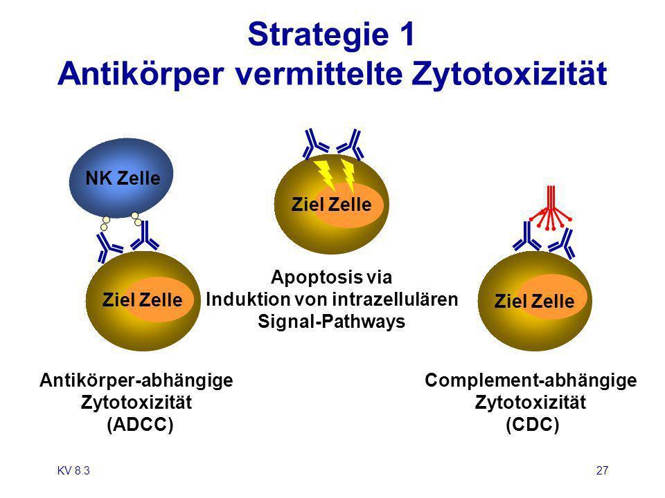 Strategie 1 Antikörper vermittelte Zytotoxizität