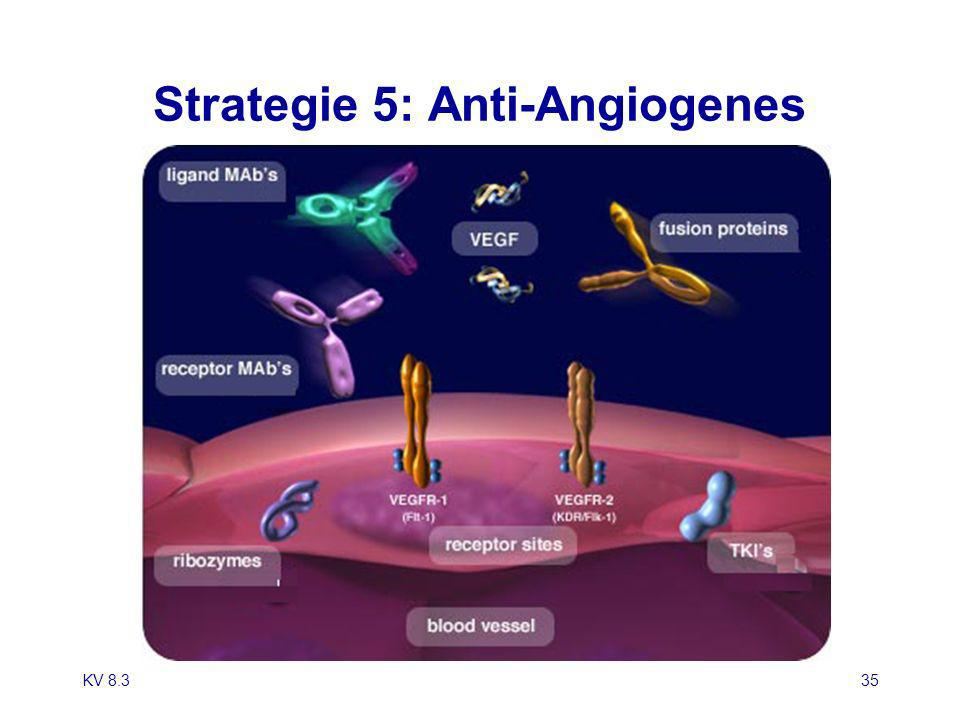 Strategie 5: Anti-Angiogenes