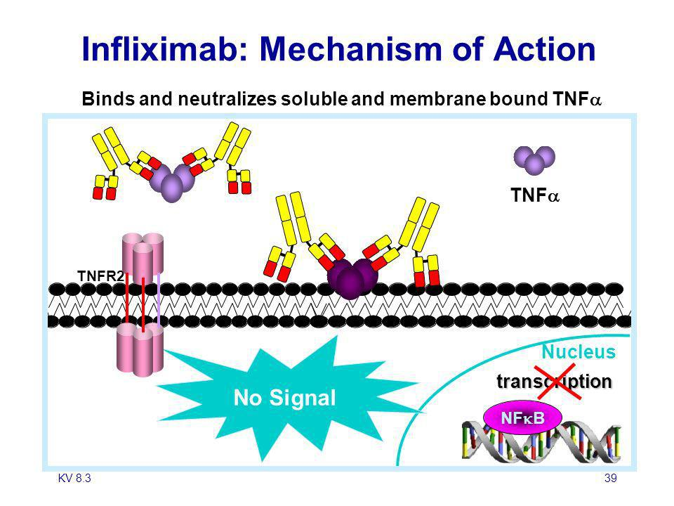 Infliximab: Mechanism of Action