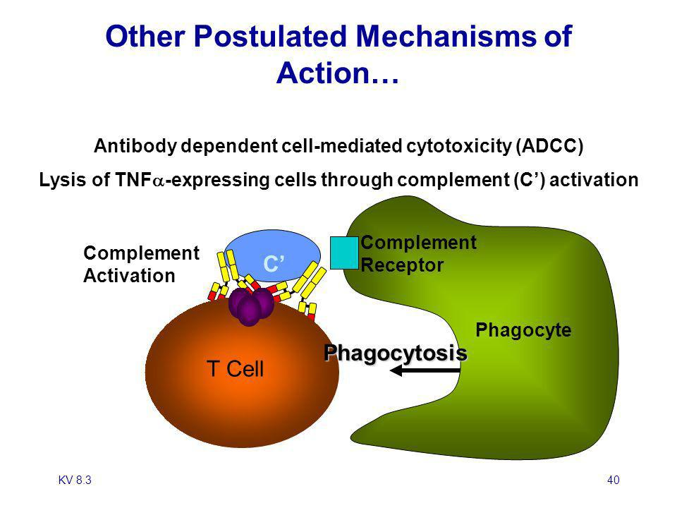 Other Postulated Mechanisms of Action…