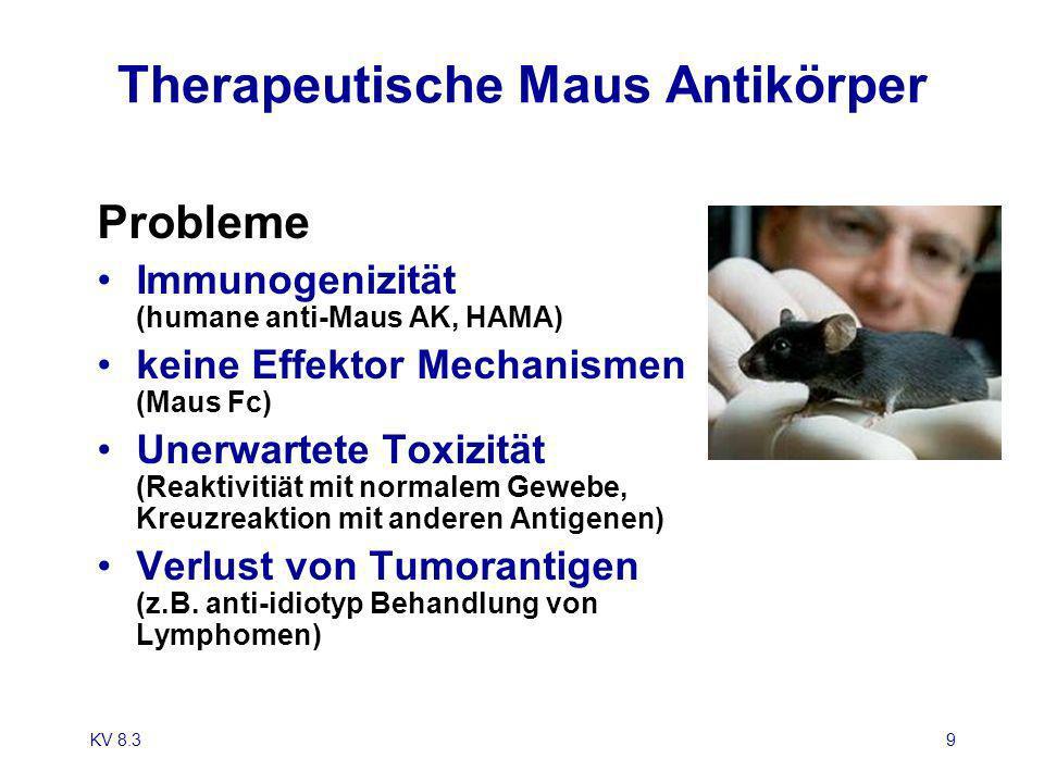 Therapeutische Maus Antikörper