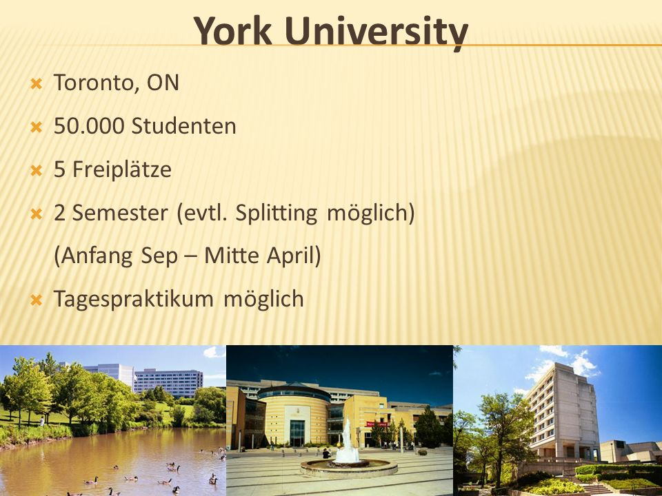York University Toronto, ON 50.000 Studenten 5 Freiplätze