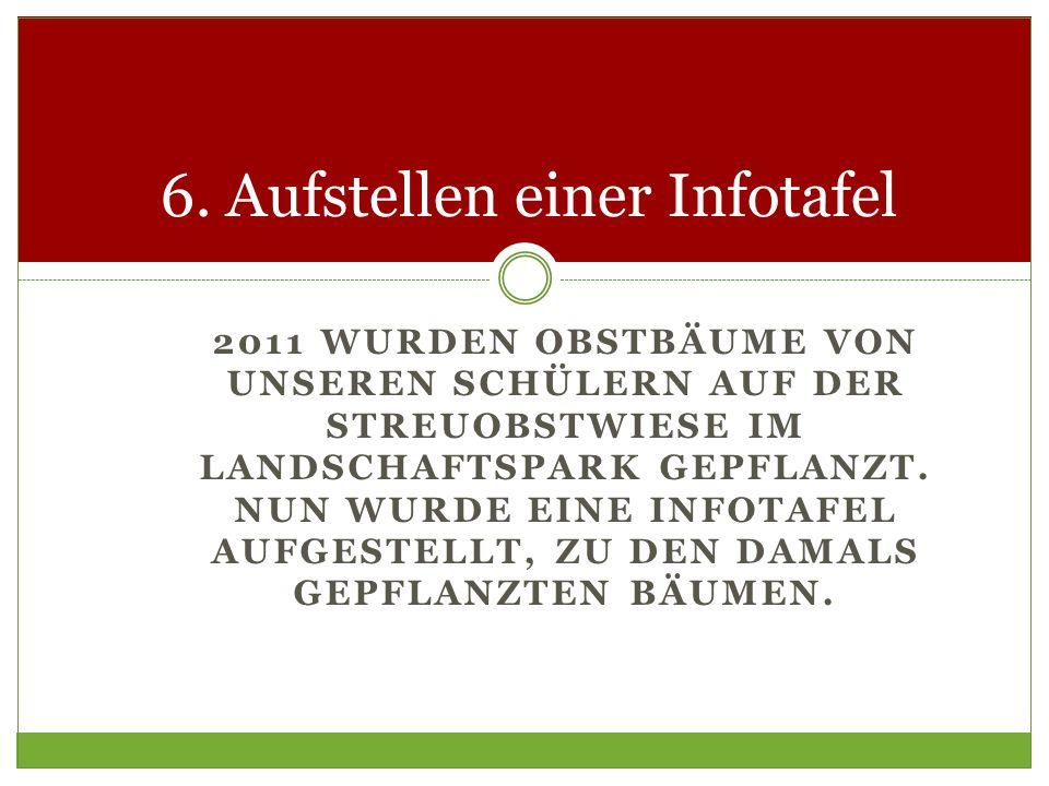 6. Aufstellen einer Infotafel