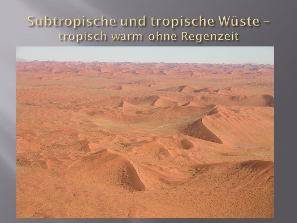 Subtropische und tropische Wüste – tropisch warm ohne Regenzeit