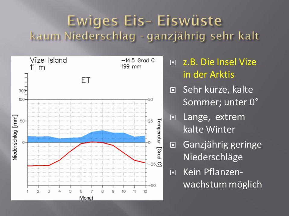 Ewiges Eis– Eiswüste kaum Niederschlag - ganzjährig sehr kalt