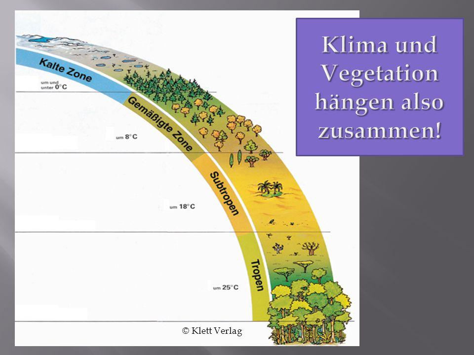 Klima und Vegetation hängen also zusammen!