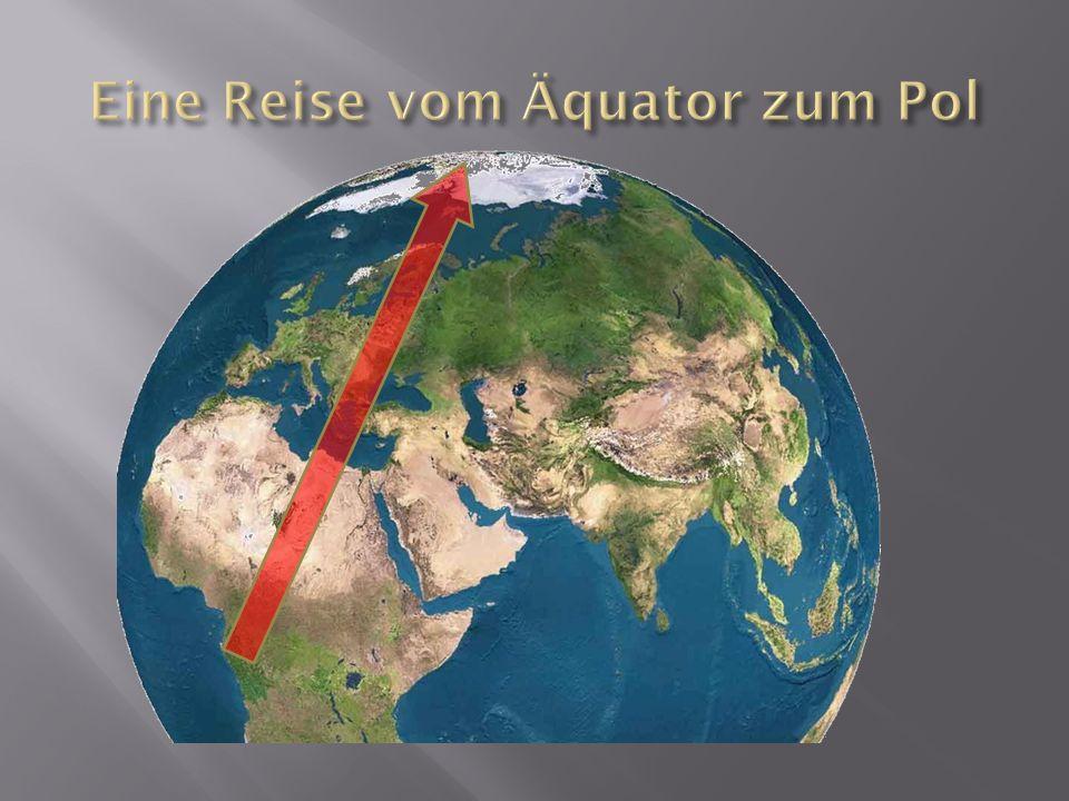 Eine Reise vom Äquator zum Pol