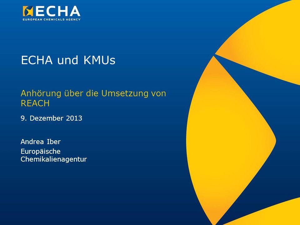 ECHA und KMUs Anhörung über die Umsetzung von REACH 9. Dezember 2013