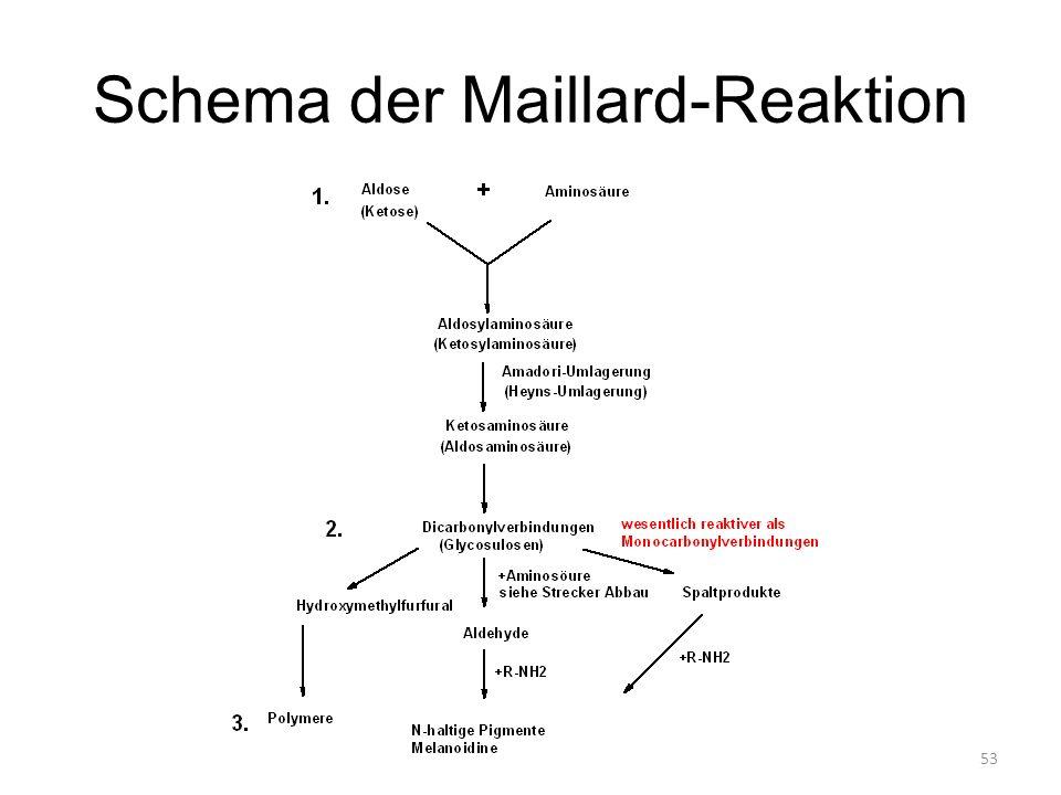 Schema der Maillard-Reaktion