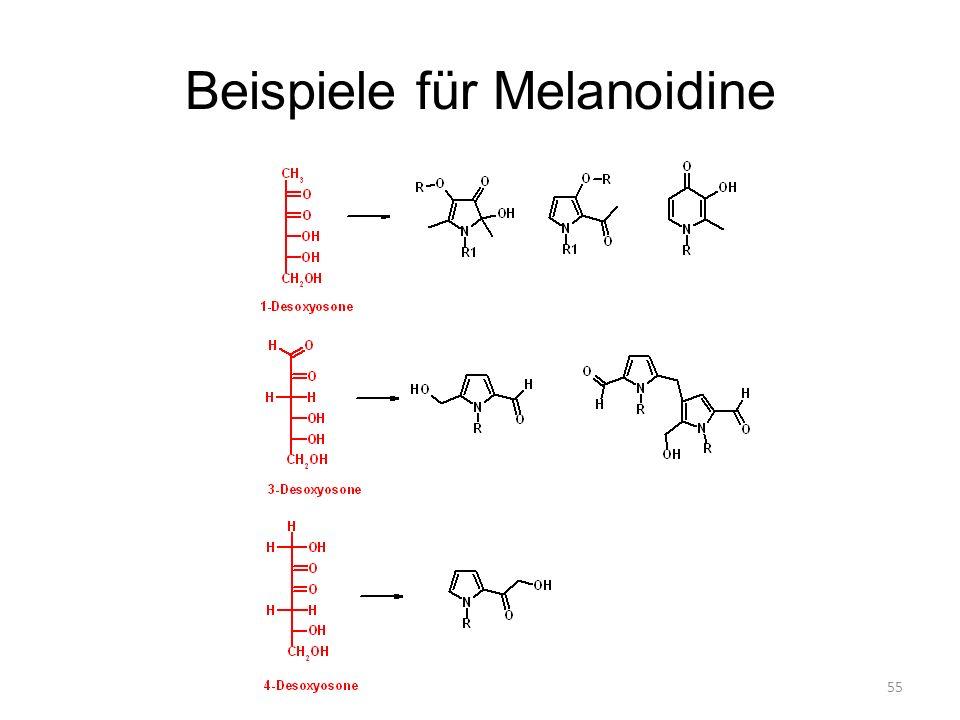 Beispiele für Melanoidine