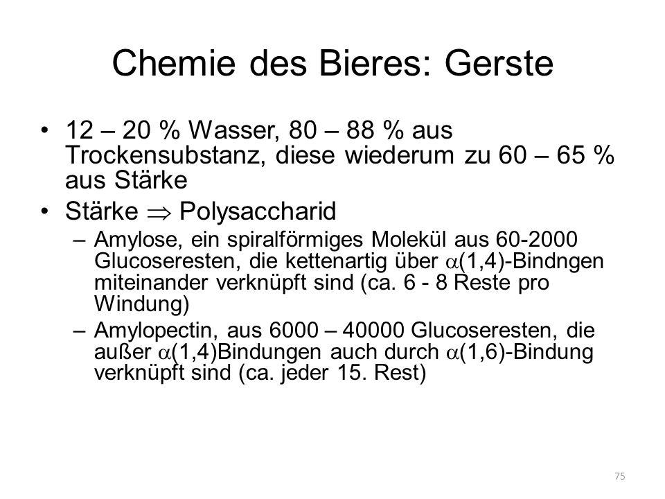 Chemie des Bieres: Gerste