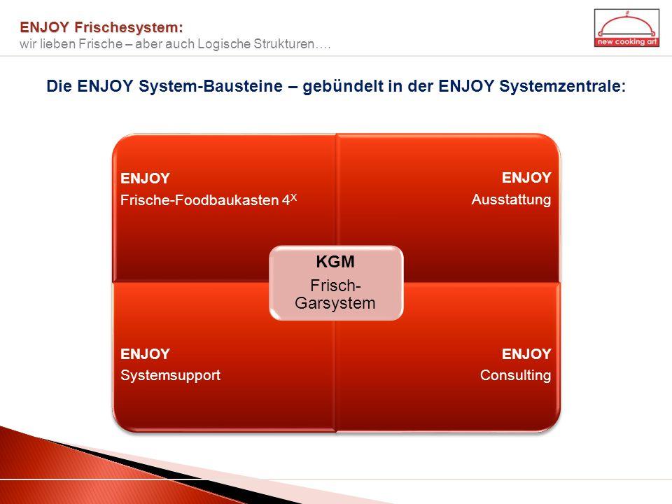 Die ENJOY System-Bausteine – gebündelt in der ENJOY Systemzentrale: