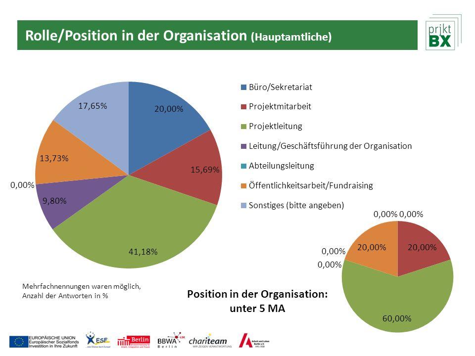 Rolle/Position in der Organisation (Hauptamtliche)
