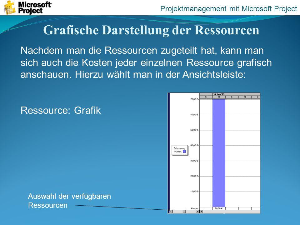 Grafische Darstellung der Ressourcen