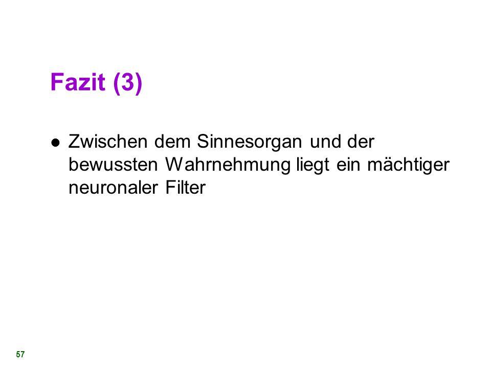 Fazit (3) Zwischen dem Sinnesorgan und der bewussten Wahrnehmung liegt ein mächtiger neuronaler Filter.