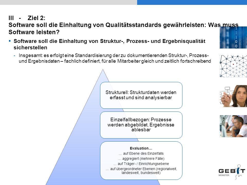 III - Ziel 2: Software soll die Einhaltung von Qualitätsstandards gewährleisten: Was muss Software leisten