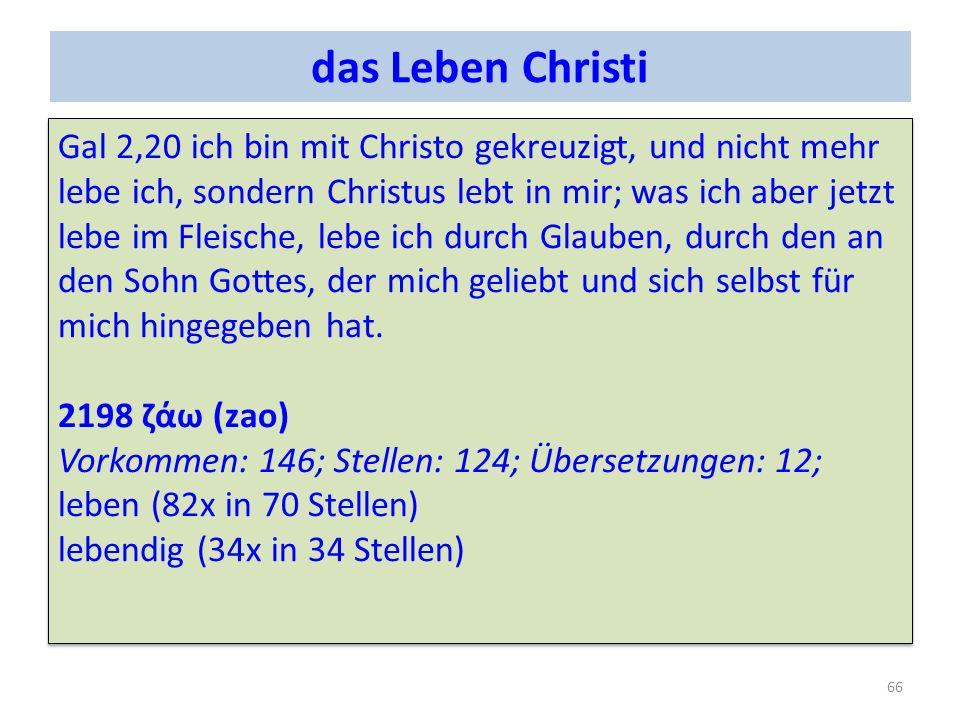 das Leben Christi