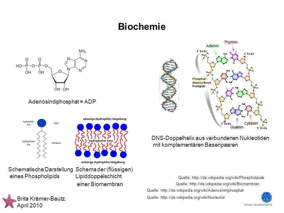 Biochemie Adenosindiphosphat = ADP