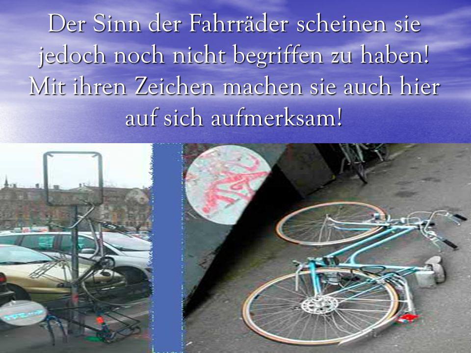 Der Sinn der Fahrräder scheinen sie jedoch noch nicht begriffen zu haben.
