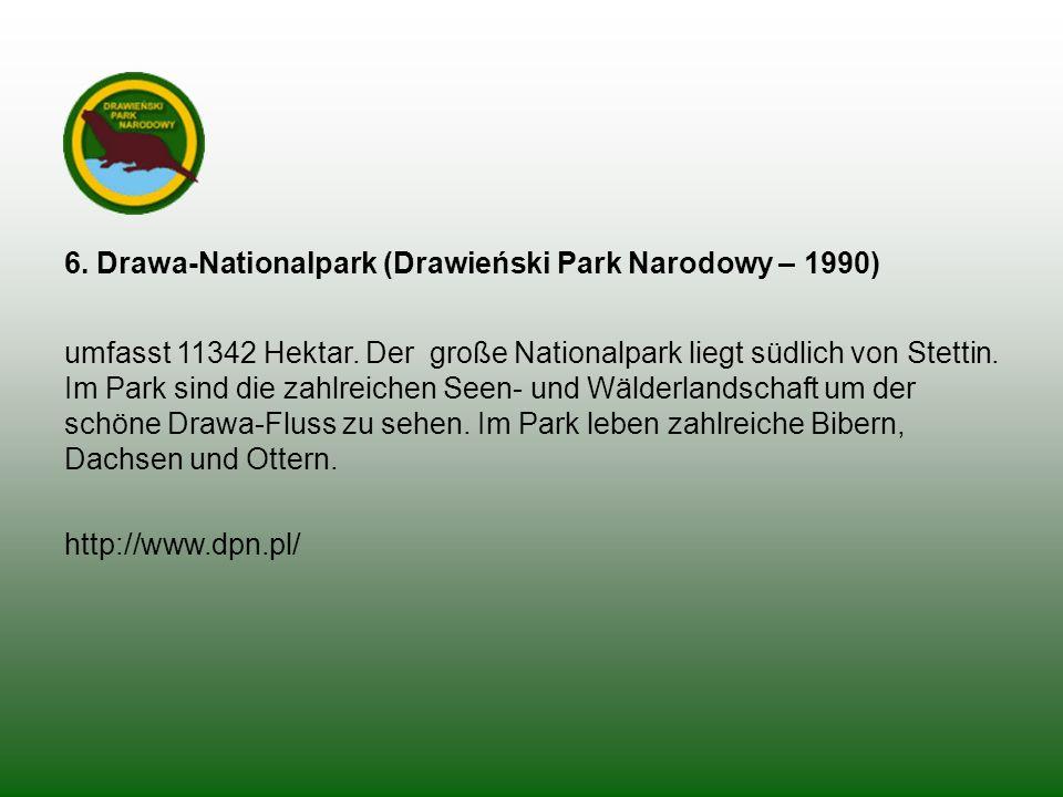 6. Drawa-Nationalpark (Drawieński Park Narodowy – 1990)