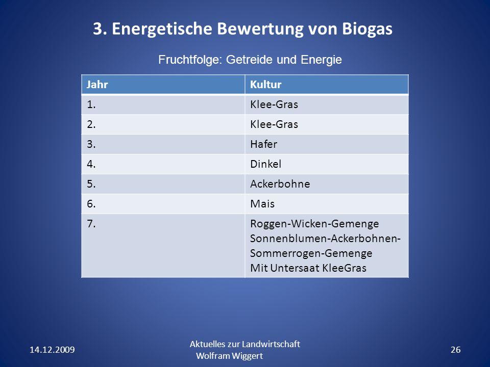 3. Energetische Bewertung von Biogas