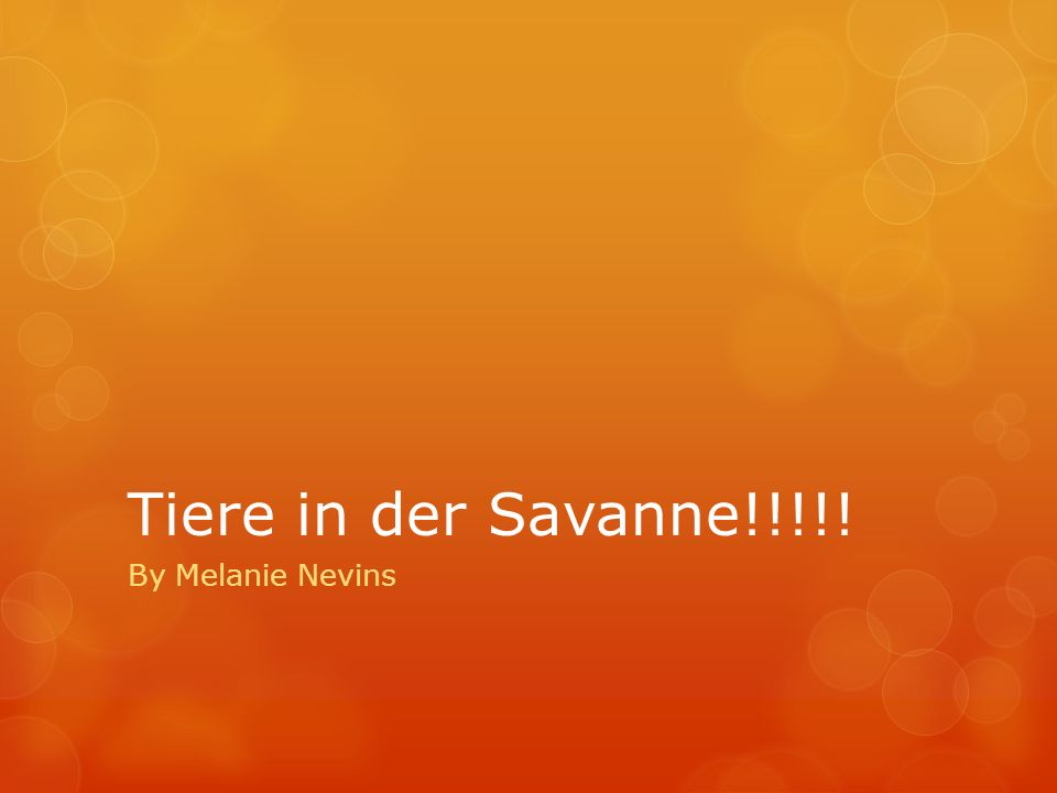 Tiere in der Savanne!!!!! By Melanie Nevins