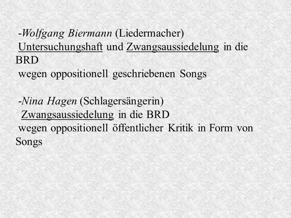 -Wolfgang Biermann (Liedermacher)