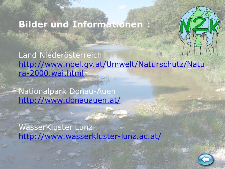 Bilder und Informationen : Land Niederösterreich http://www. noel. gv