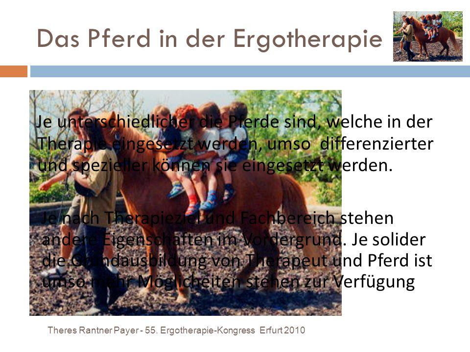 Das Pferd in der Ergotherapie