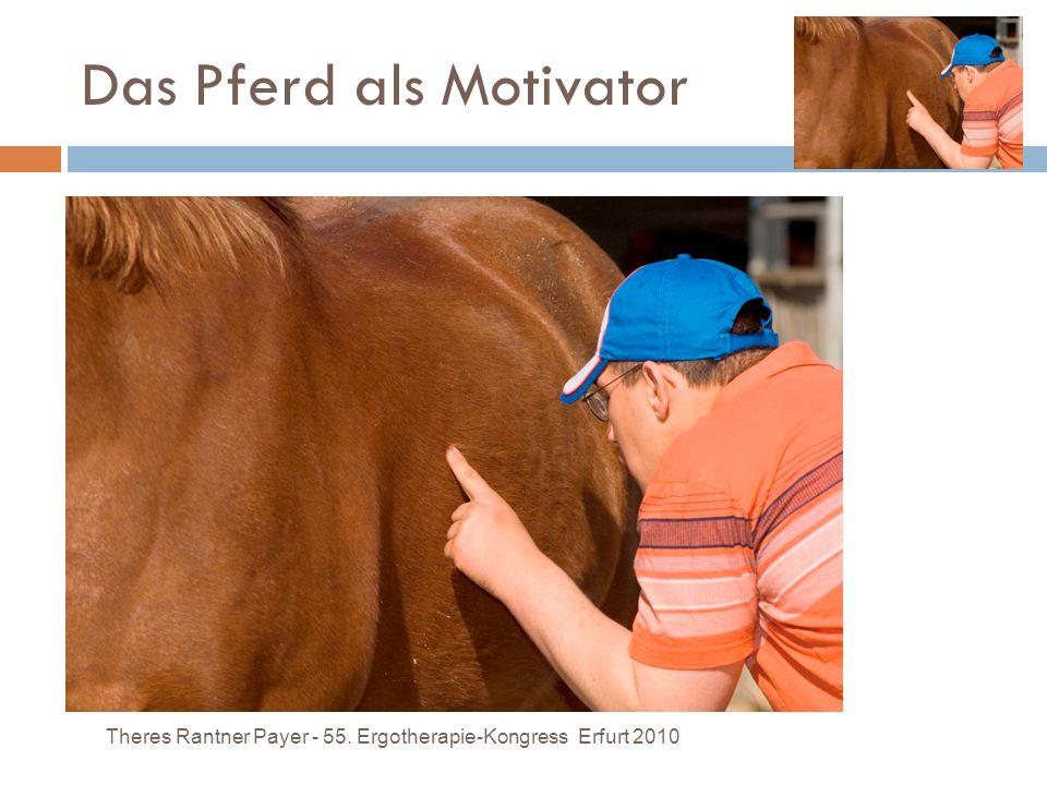 Das Pferd als Motivator