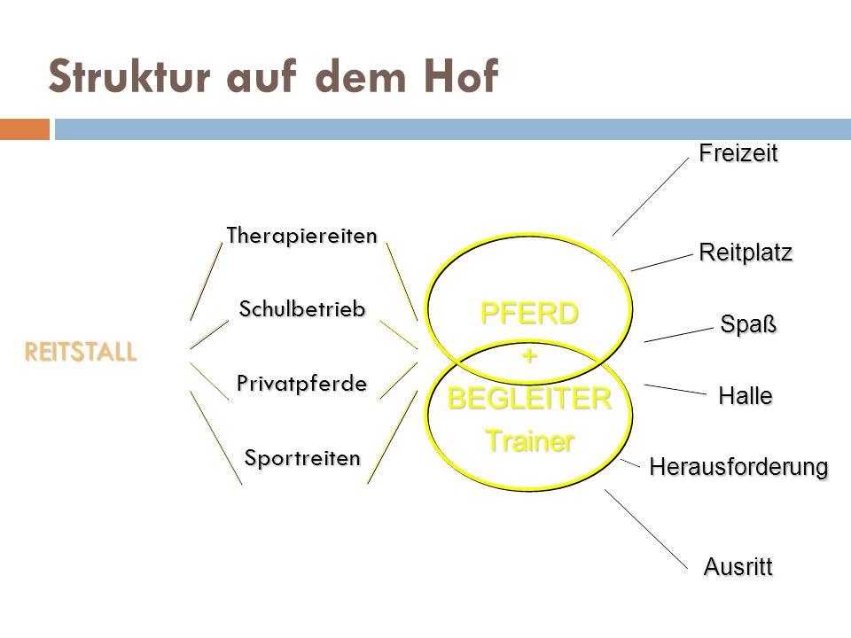 Struktur auf dem Hof PFERD + REITSTALL BEGLEITER Trainer