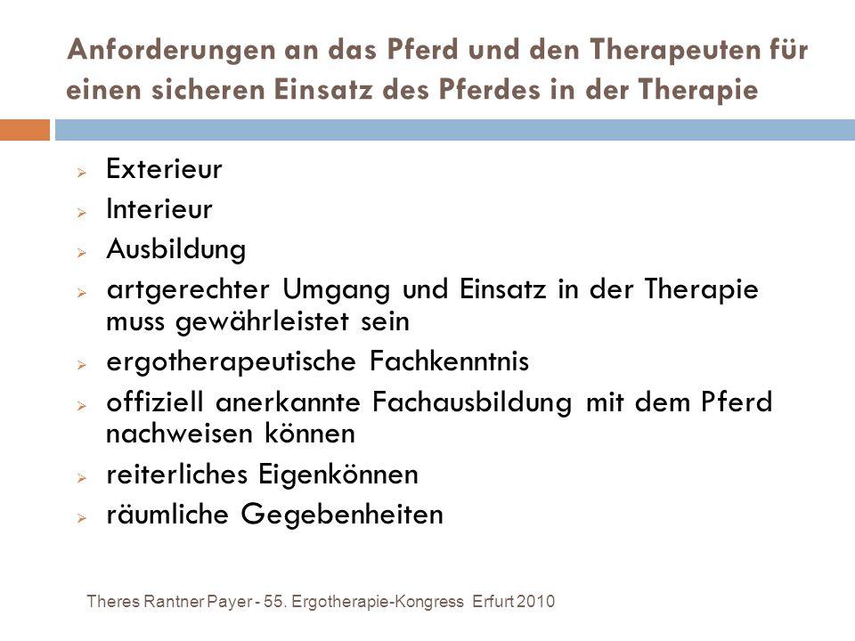 ergotherapeutische Fachkenntnis
