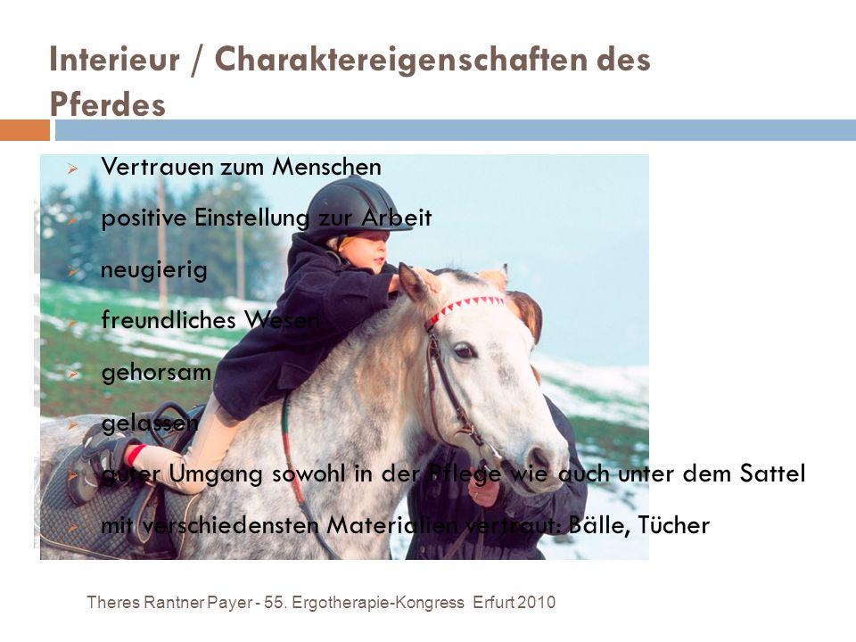 Interieur / Charaktereigenschaften des Pferdes