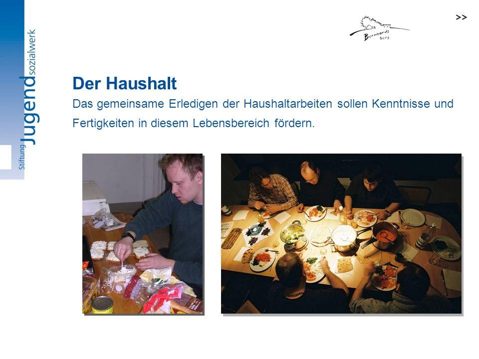 >> Der Haushalt.