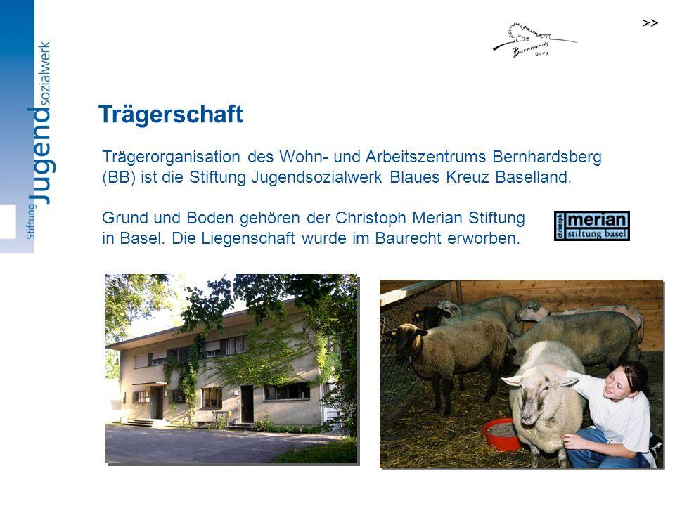 >> Trägerschaft. Trägerorganisation des Wohn- und Arbeitszentrums Bernhardsberg (BB) ist die Stiftung Jugendsozialwerk Blaues Kreuz Baselland.