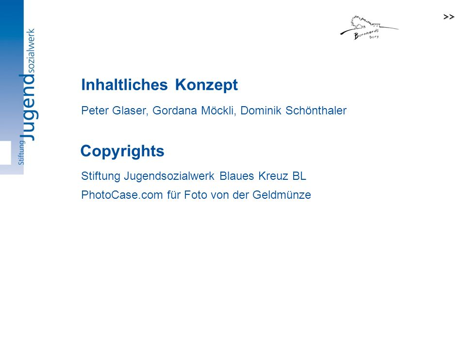 Inhaltliches Konzept Copyrights