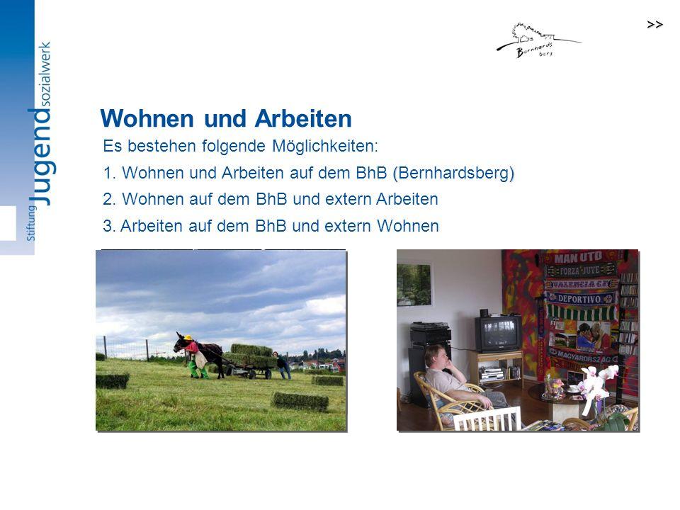 Wohnen und Arbeiten Unsere zwei Hauptangebote: