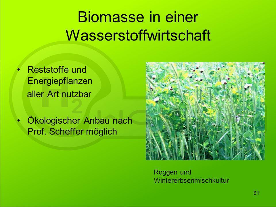 Biomasse in einer Wasserstoffwirtschaft
