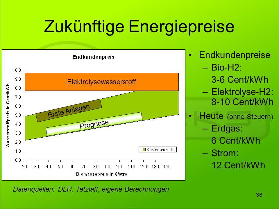Zukünftige Energiepreise