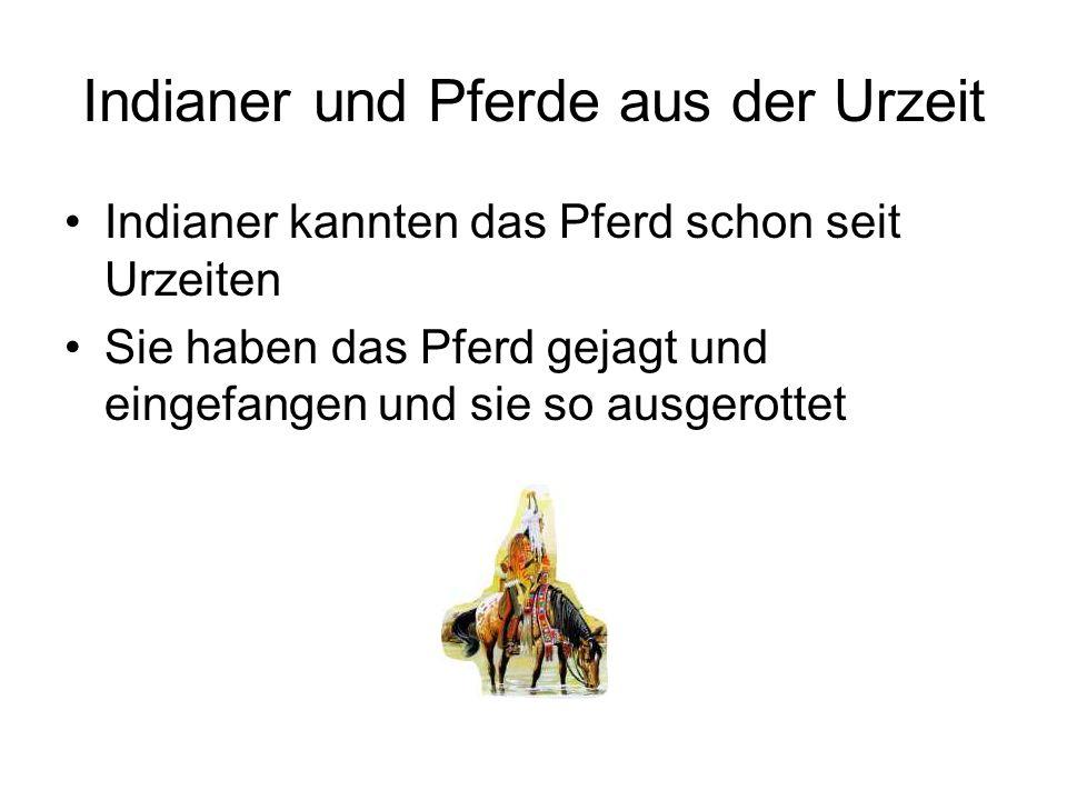 Indianer und Pferde aus der Urzeit