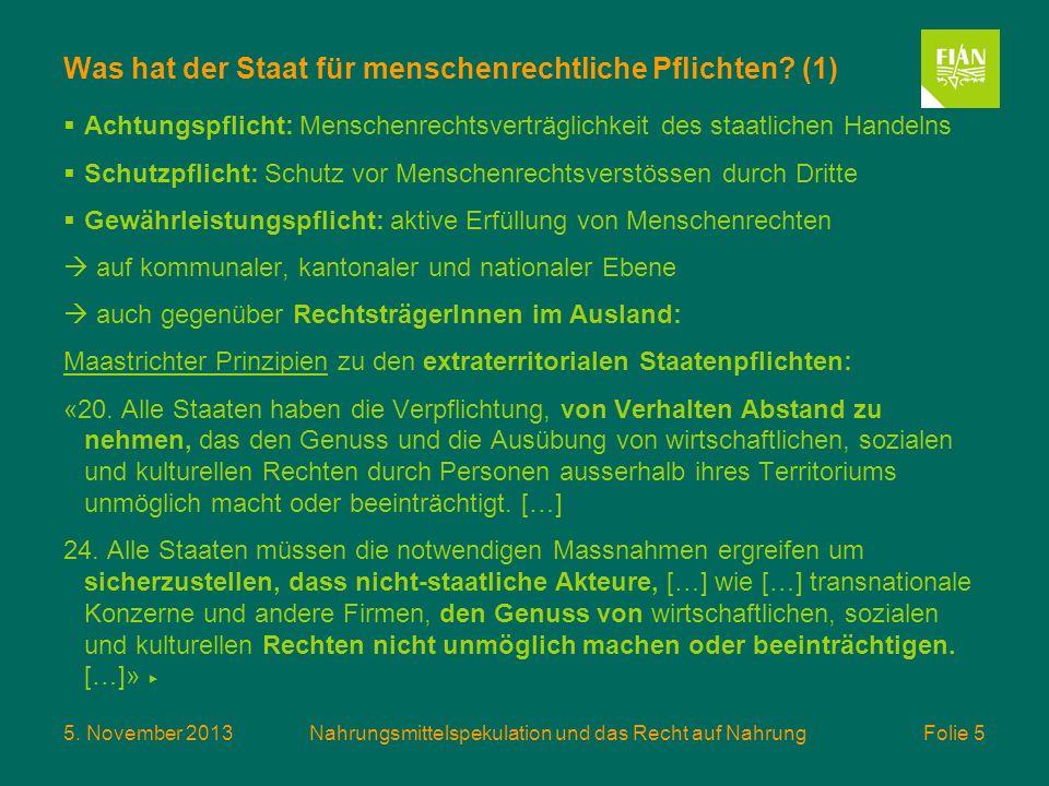 Was hat der Staat für menschenrechtliche Pflichten (1)