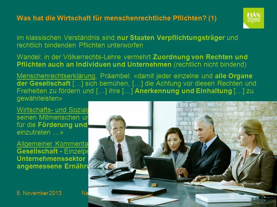 Was hat die Wirtschaft für menschenrechtliche Pflichten (1)