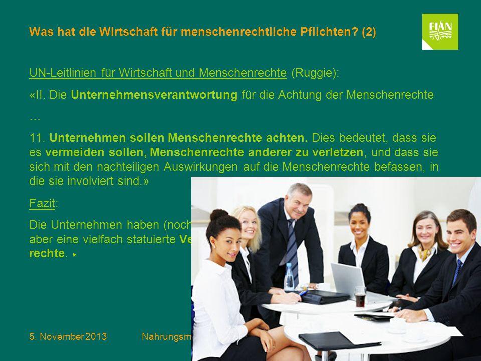 Was hat die Wirtschaft für menschenrechtliche Pflichten (2)