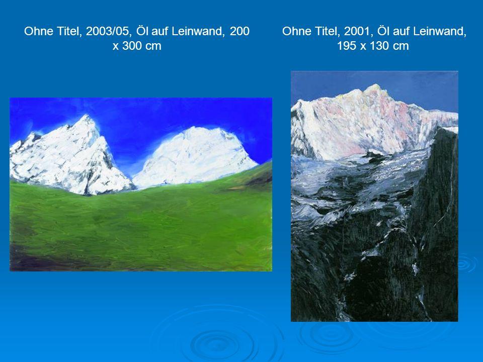 Ohne Titel, 2003/05, Öl auf Leinwand, 200 x 300 cm