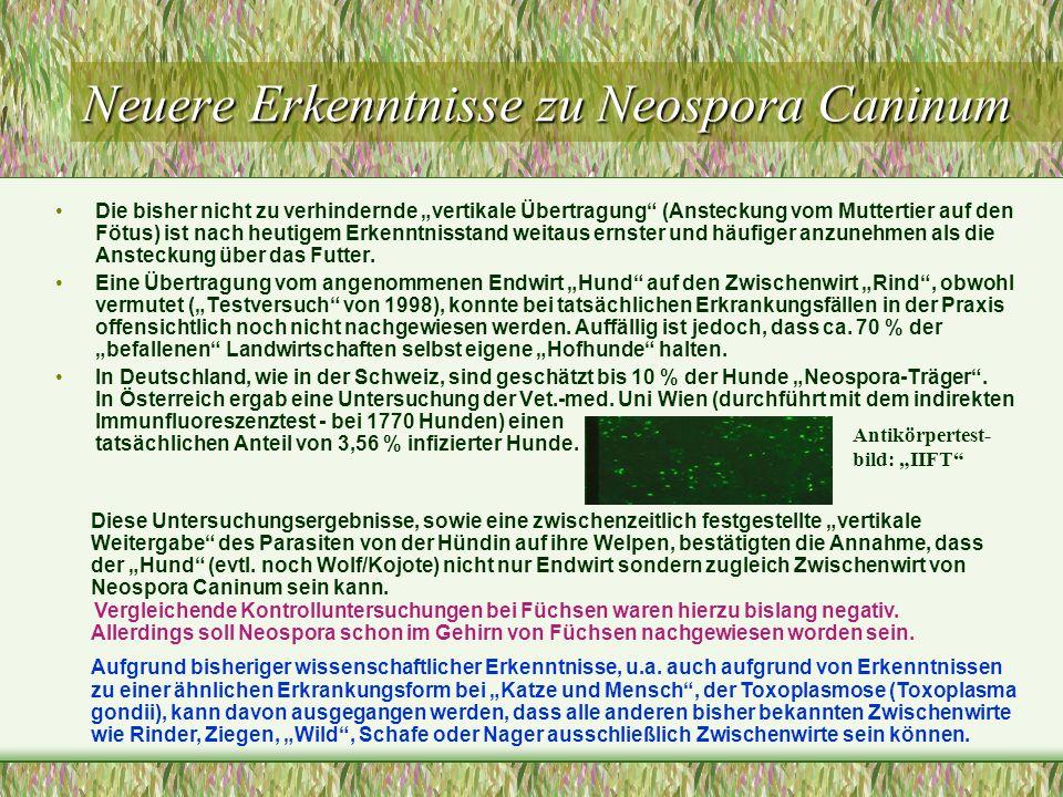 Neuere Erkenntnisse zu Neospora Caninum
